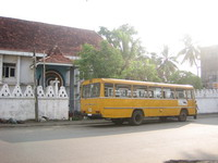 yellow bus200.jpg